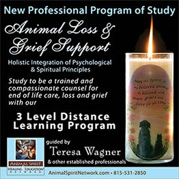 ASN Loss Program