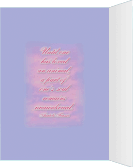 inside quote image