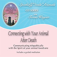 Pet Loss CD: Connecting with your animal after death