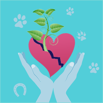 Pet Loss Grief Support Certification